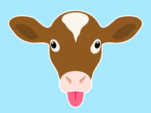 Calf head sticking out tongue. Calf head sticking out pink tongue royalty free illustration