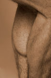 Calf muscles. Sepia male calf muscles Royalty Free Stock Photos