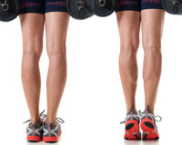 Calf Raise Royalty Free Stock Image