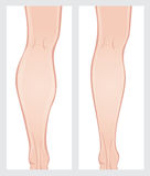 Calf reduction surgery Royalty Free Stock Image