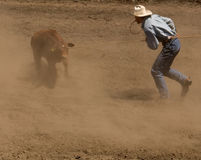 Calf Roper Gets Ready for Tie. Calf roper at 2006 Russian River Rodeo, Duncans Mills, California Royalty Free Stock Photos