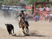 Calf Roping 3 Royalty Free Stock Photo