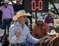 Calf Roping Cowboy Royalty Free Stock Image