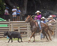 Calf Roping. Event:  22nd Annual All-Girls Rodeo Royalty Free Stock Photo
