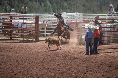 Calf Roping Royalty Free Stock Image