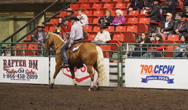 Calf Roping Official On Horseback Stock Photos