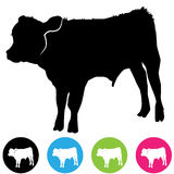 Calf Silhouette Stock Photo