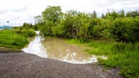 CALGARY, ALBERTA, CANADA - JUNI 19, 2013: De vloed van de Elleboogrivier Stock Afbeeldingen