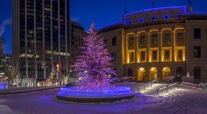 Calgary bij Kerstmis Stock Foto