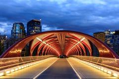 Calgary bij nacht Stock Foto