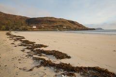 Calgary-Buchtstrand Insel von Mull Argyll und hochgebogene Hinterkante Schottland britisches schottisches inneres Hebrides Lizenzfreie Stockfotografie