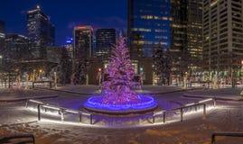 Calgary at Christmas Stock Photography