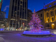 Calgary at Christmas Royalty Free Stock Photos