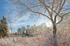 Calgary City in Winter. The city of Calgary framed by a winter landscape Royalty Free Stock Images