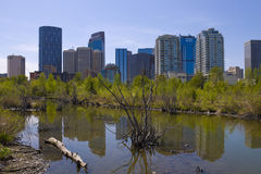 Calgary Downtown from Princess Island Royalty Free Stock Images