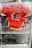 Calgary Flames jersey Stock Photography