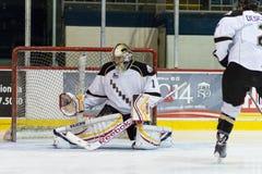 Calgary flammar goalien Mason McDonald Royaltyfri Fotografi