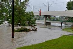 Calgary flod 2013 Arkivfoto