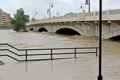 Calgary Flood 2013 Royalty Free Stock Images