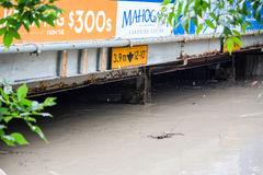 Calgary 2013 flood Royalty Free Stock Photos