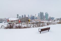 Calgary horisont i vintern royaltyfri bild