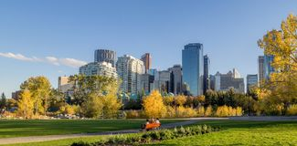 Calgary linia horyzontu Fotografia Stock
