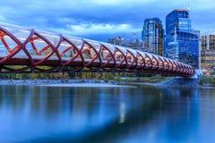 Calgary na noite Imagem de Stock Royalty Free