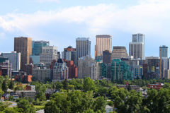 Calgary office buildings. Skyline view of highrise office and apartment buildings in Calgary, Alberta, Canada with greenery in the foreground Royalty Free Stock Image