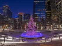 Calgary przy bożymi narodzeniami Obrazy Stock