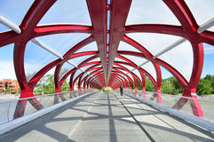 Calgary's Peace Bridge royalty free stock photo