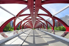 Calgary's Peace Bridge Royalty Free Stock Image