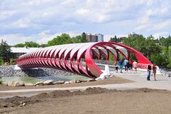 Calgary's Peace Bridge Royalty Free Stock Images