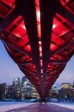 Calgary's Peace Bridge and skyline at night Stock Image