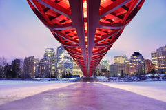 Calgary's skyline at night Royalty Free Stock Photos