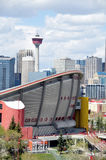 Calgary's urban jungle Royalty Free Stock Images