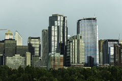 Calgary skyline seen from Bow River. At Prince`s Island Park stock photography