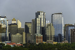 Calgary skyline seen from Bow River. At Prince`s Island Parks royalty free stock photography