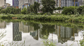 Calgary skyline seen from Bow River. At Prince`s Island path royalty free stock photography
