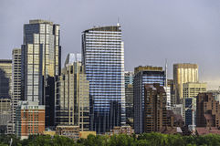 Calgary skyline. Seen from Prince`s Island Park stock images
