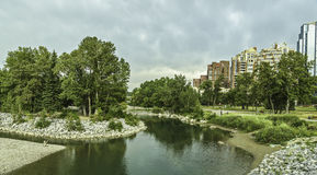 Calgary skyline. Seen from Prince`s Island Park royalty free stock image