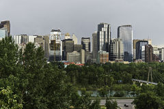 Calgary skyline. Seen from Prince`s Island Park stock image