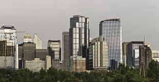 Calgary skyline. Seen from Prince`s Island Park royalty free stock images