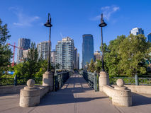 Calgary skyline in summer Royalty Free Stock Photo