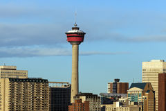 Calgary Tower. Above the buildings. Calgary, Alberta, Canada Royalty Free Stock Photo