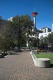 calgary wieży zdjęcia royalty free
