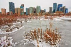 Calgary Winter Cityscape. Cityscape of Calgary viewed from Prince's Island Park Royalty Free Stock Photography