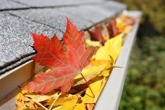 Calha da chuva completamente das folhas foto de stock royalty free
