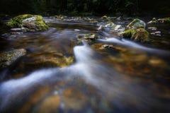 Calha de fluxo do rio as rochas Imagem de Stock