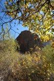 Calha do Mountain View as árvores foto de stock royalty free