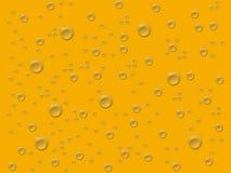 Cali grigi nel fondo dell'oro Fotografia Stock Libera da Diritti